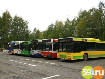 Расписание и маршруты движения автобусов - YarCom Ru