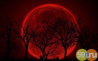 В ночь на 28 сентября пермяки увидят «кровавую» луну