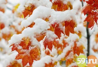 Синоптики прогнозируют серьезное похолодание кконцу недели