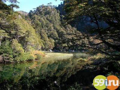 ВПерми создадут 4 охраняемых природных зоны в этом 2017г