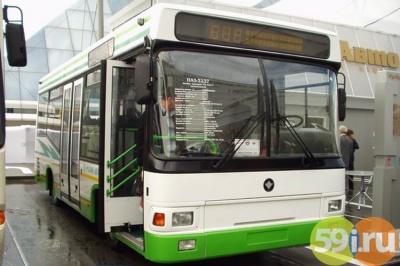 Вновогодние праздники вПерми поменяется расписание городского автомобильного транспорта